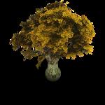Tree_Archigraphs_512x512