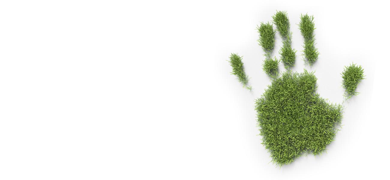 Reducir nuestra huella en la naturaleza